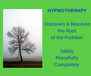 hypnotherapy; discovers & resolves the root of the problem; safely, peacefully, completely | tree